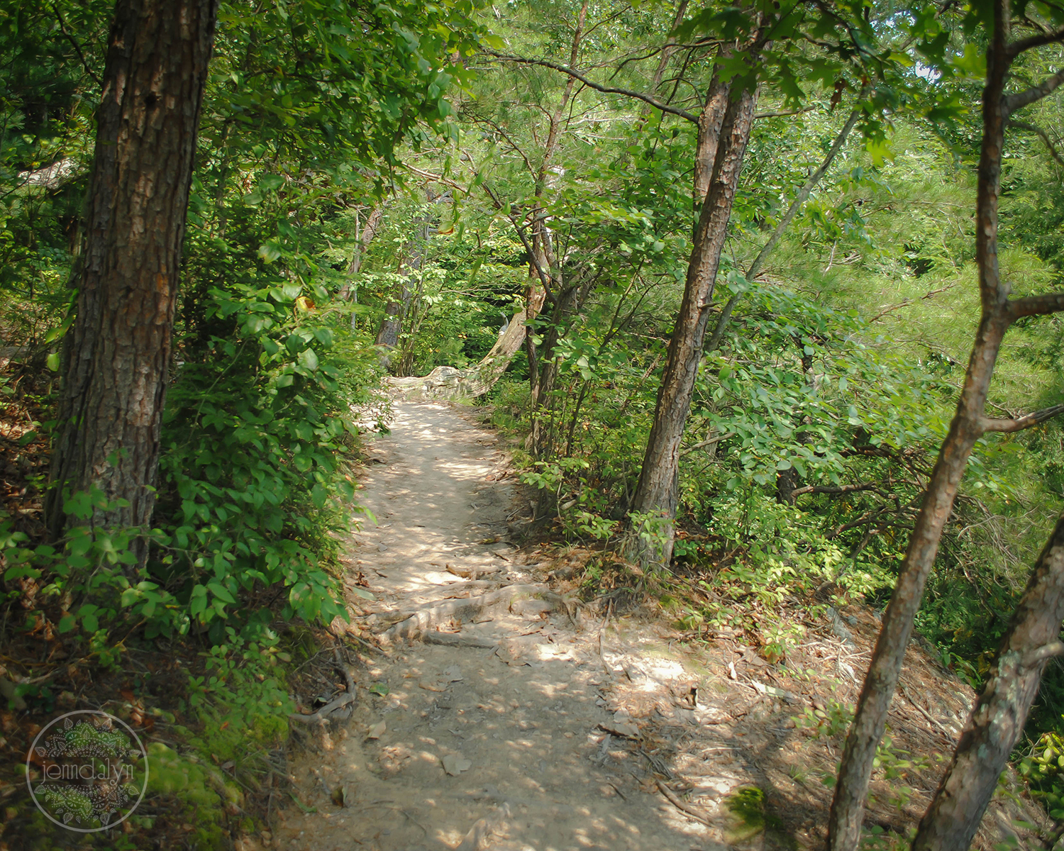 conkles hollow hiking trail