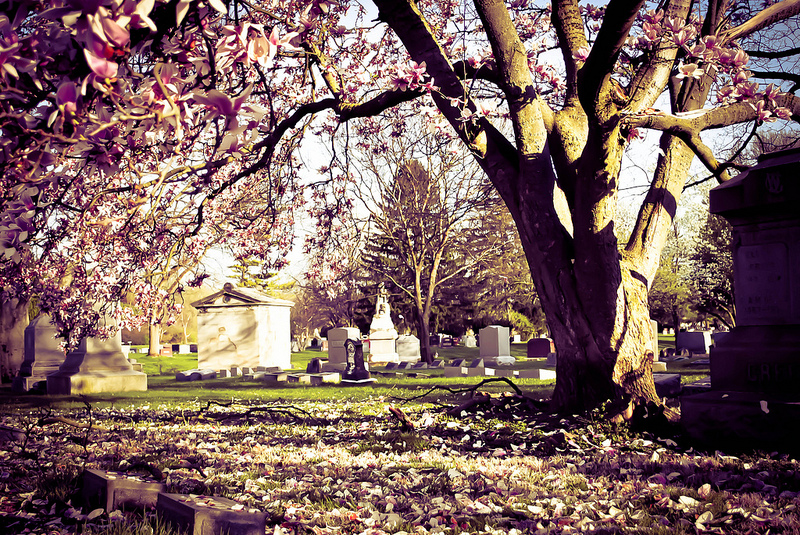 greenlawn cemetery columbus ohio
